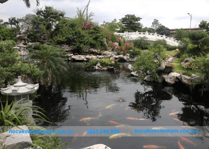 thiết kế hồ cá koi trong nhà và sân vườn: ảnh 3