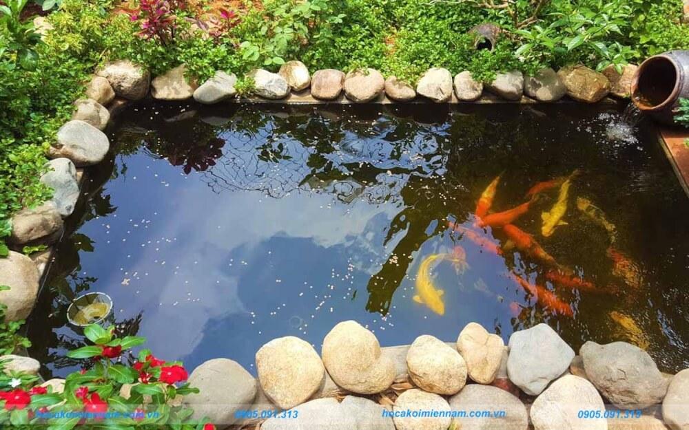 Hồ cá koi hình chữ nhật