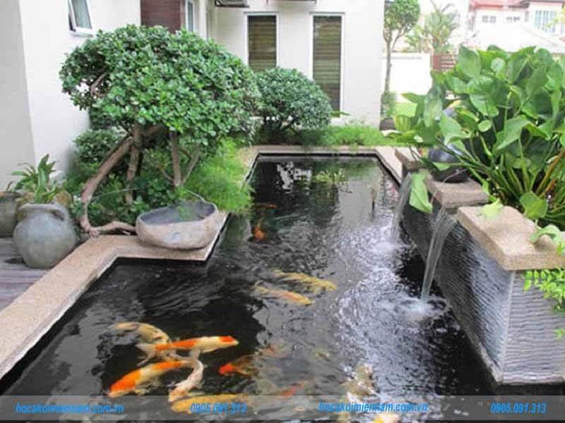 Thi công hồ cá koi tại Bà Rịa Vũng Tàu