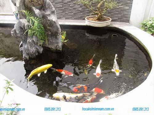 Thiết kế thi công hồ cá koi tại Long An