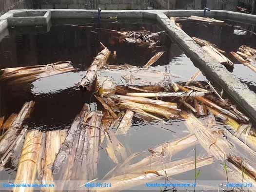 Các cách xử lý hồ xi măng mới xây trước khi thả cá koi