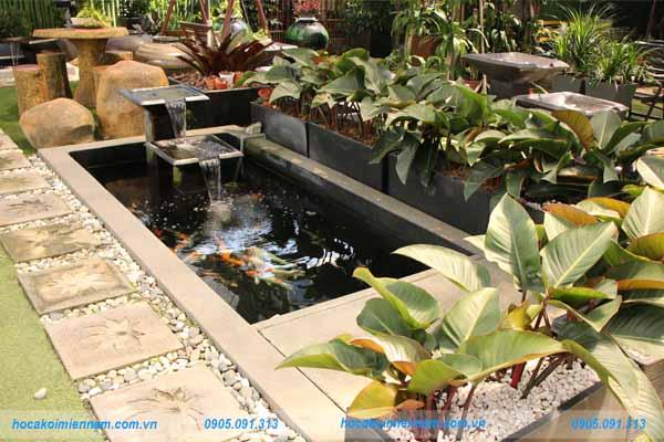Thiết kế thi công hồ cá koi Quy Nhơn - Bình Định