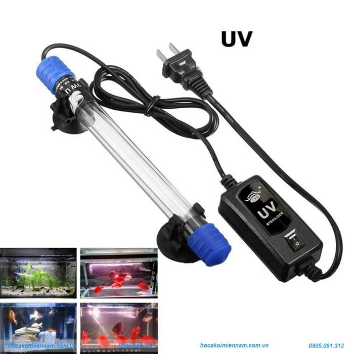 Đèn UV hồ cá koi