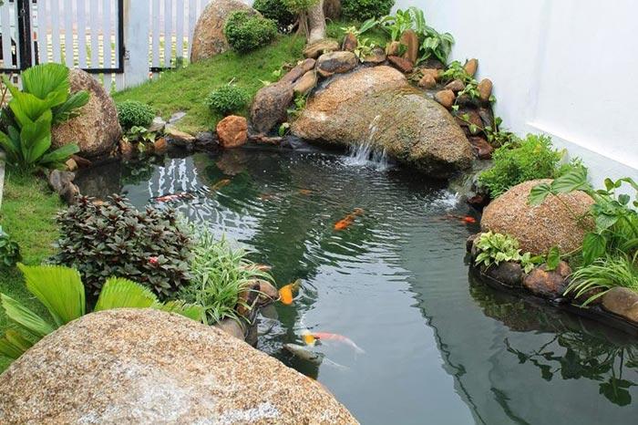 Tổng hợp mẫu thiết kế hồ cá koi ngoài trời đẹp 11