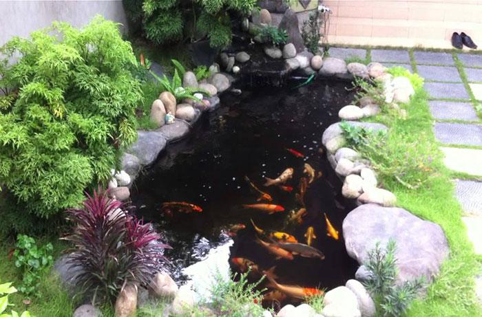 Tổng hợp mẫu thiết kế hồ cá koi ngoài trời đẹp 13