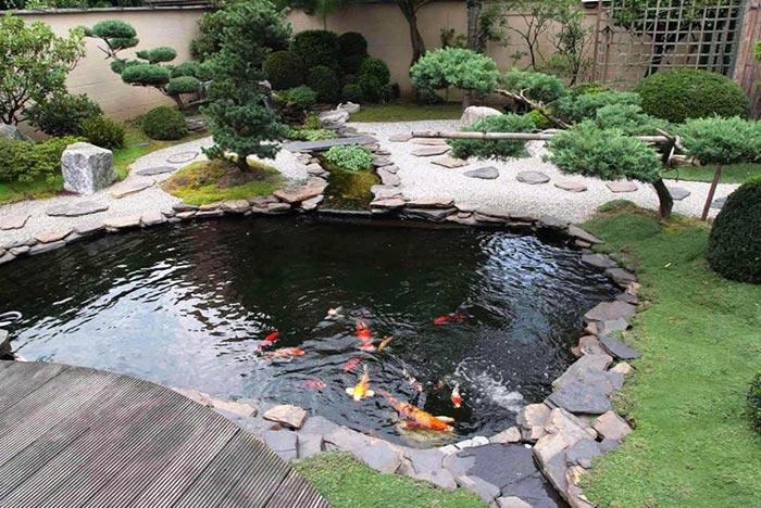 Tổng hợp mẫu thiết kế hồ cá koi ngoài trời đẹp 8